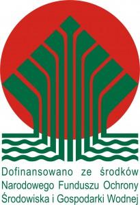 logo_kolor_dofinansowano