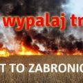featured image ARiMR przypomina – wypalanie traw grozi utratą dopłat